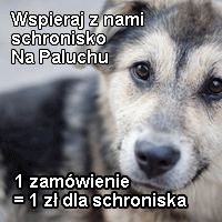 Wspieramy schronisko dla zwierząt NA PALUCHU